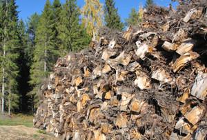Information Management of Bioenergy Supply Chains