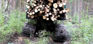 Puunkorjuun tuottavuuden parantaminen