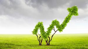 Tehokas puuhuolto 2025 -visio<br>