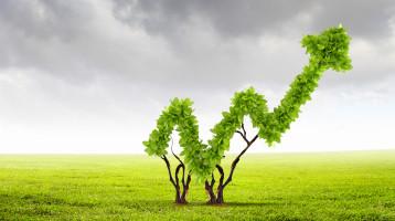 Tehokas puuhuolto 2025 -visio