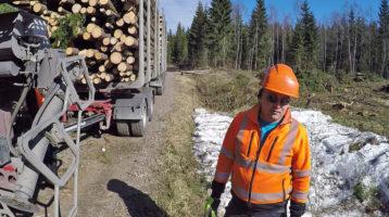 Sähköinen puutavaran autokuljetusopas valmistunut