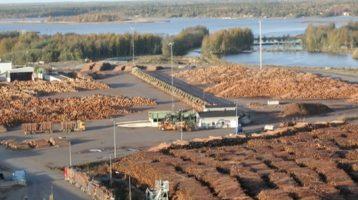 Terminaalitoiminnot energiatehokkaassa puutavaralogistiikassa – Nykytilaselvitys