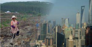 Kiina metsäteollisuuden toimintaympäristönä