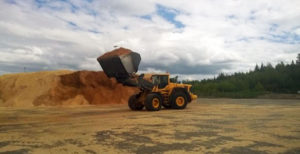 Terminaalitoiminnot energiatehokkaassa puutavaralogistiikassa. Loppuraportti