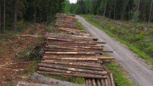 Energiatehokas puutavaran korjuu ja autokuljetus