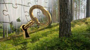 Tietosuojan hallinta metsäurakoinnissa